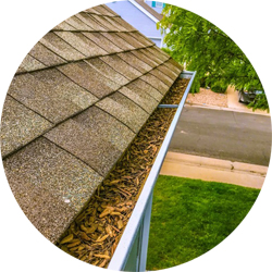 Gutter Cleaning Fort Collins, Loveland, Windsor, Longmont, Berthoud, Estes Park, Wellington, Cheyenne, Southern Wyoming